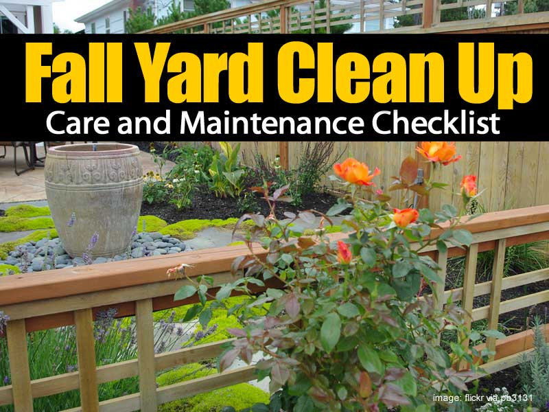 Fall Yard Cleanup 083114