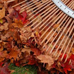 Fall_Calendar_3