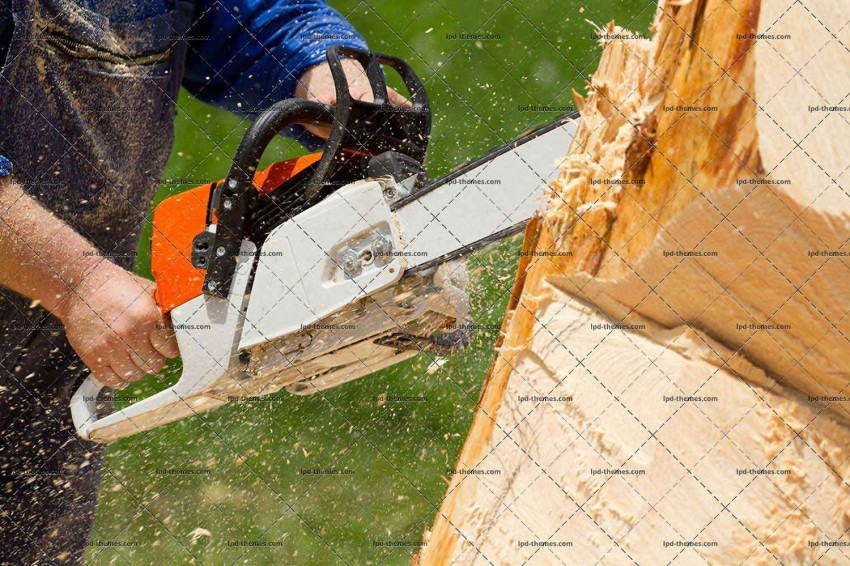 Cutting The Tree